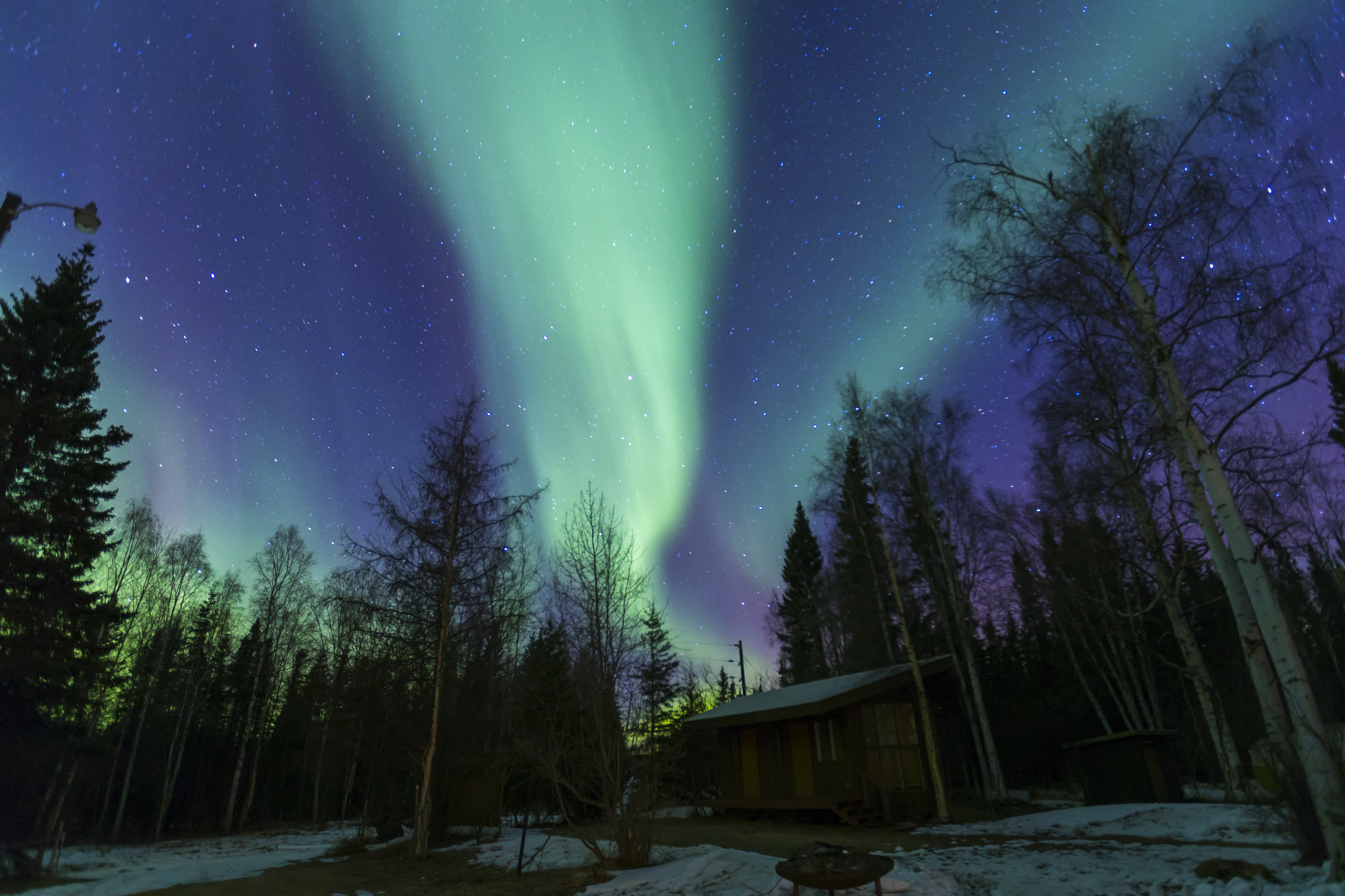 The aurora appeared in Fairbanks by the Birch Lake, on March 6. Photo by Xuan Ma.