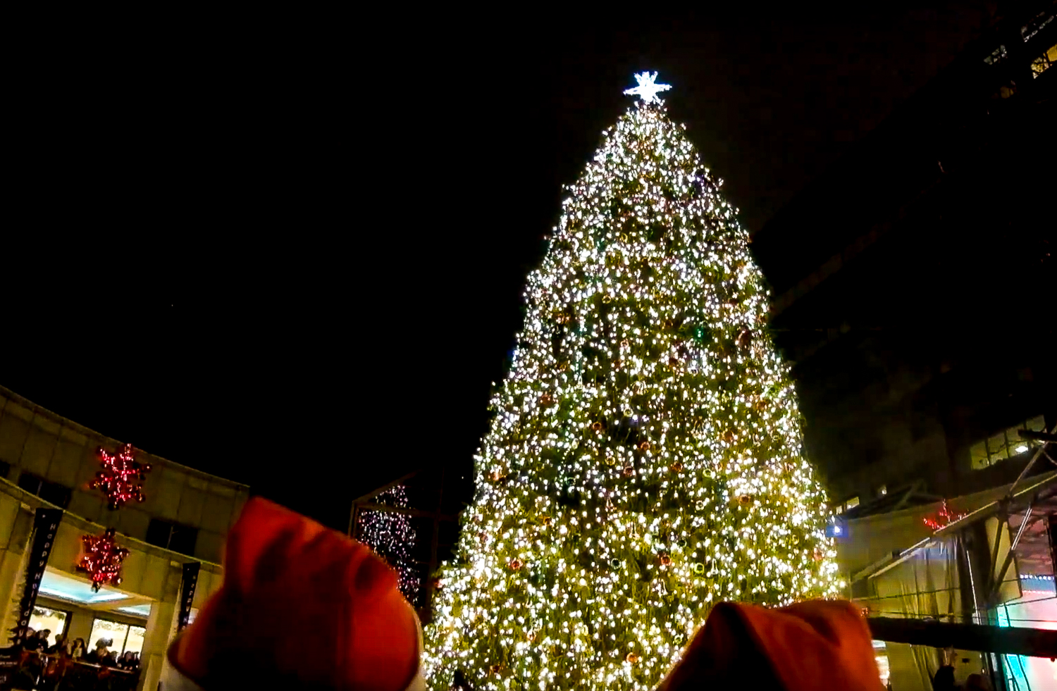 Video: Scenes From Boston's Annual Christmas Tree Lighting ... - photo#5